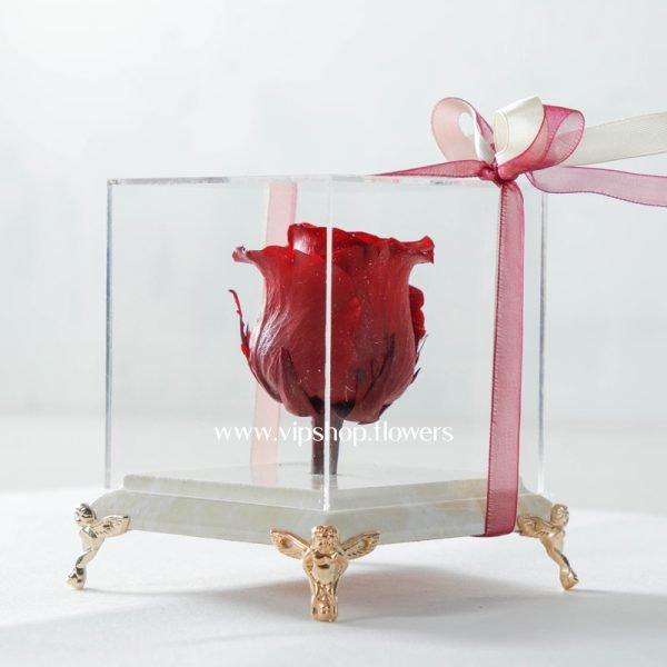 خرید گل رز جاودان زیبا