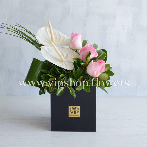 جعبه گل شماره ۴۳