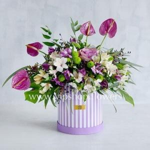 جعبه گل شماره ۶۵