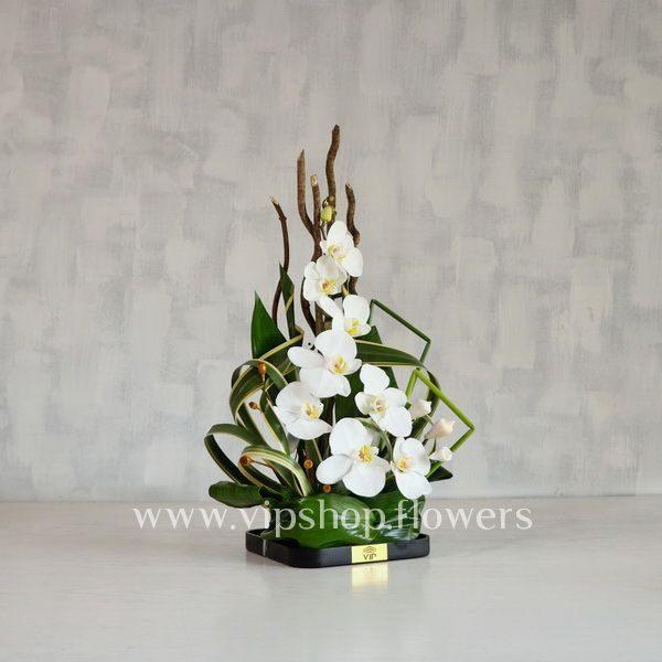 گل رومیزی شماره 5