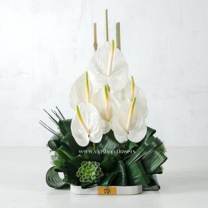 جعبه گل رومیزی آنتوریوم- گلفروشی آنلاین VIP Shop