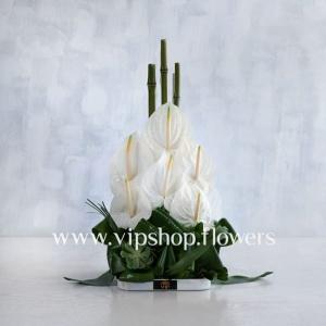 گل رومیزی شماره 07