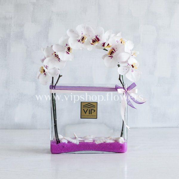 جعبه گل شماره 117