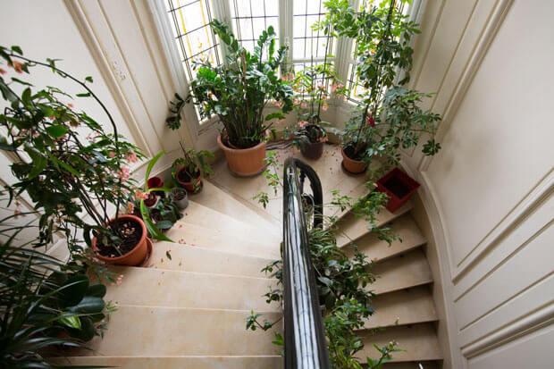 تزیین پارگرد راه پله آپارتمان با گلدان