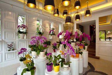گلدان فروشی