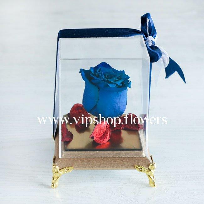 گل رز جاودان شماره 3