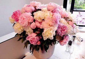 تززین گل