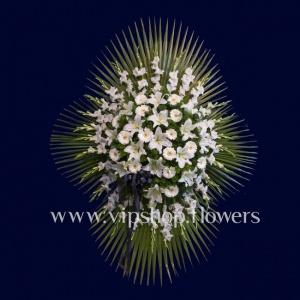 تاج گل شماره 51