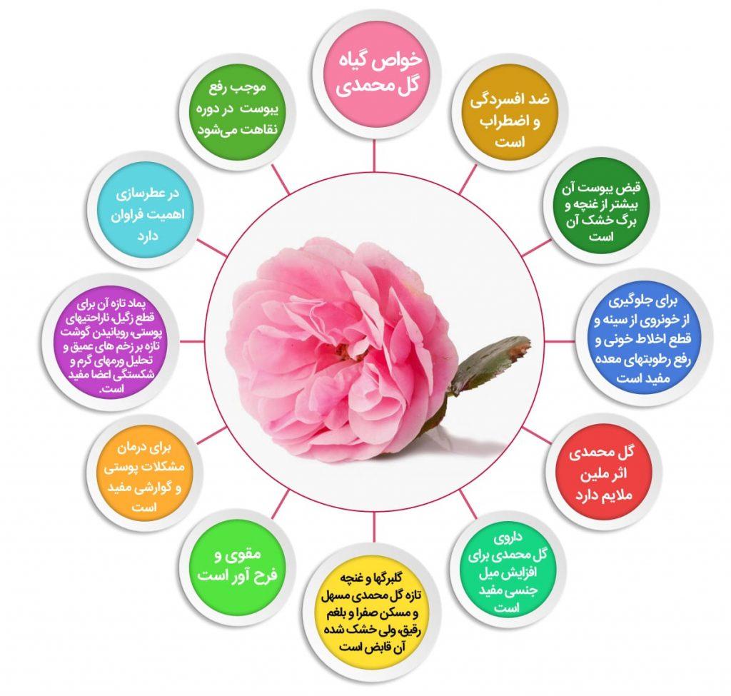 خواص گل سرخ ، گل سرخ ، گل محمدی ،خرید گل ، خرید آنلاین گل