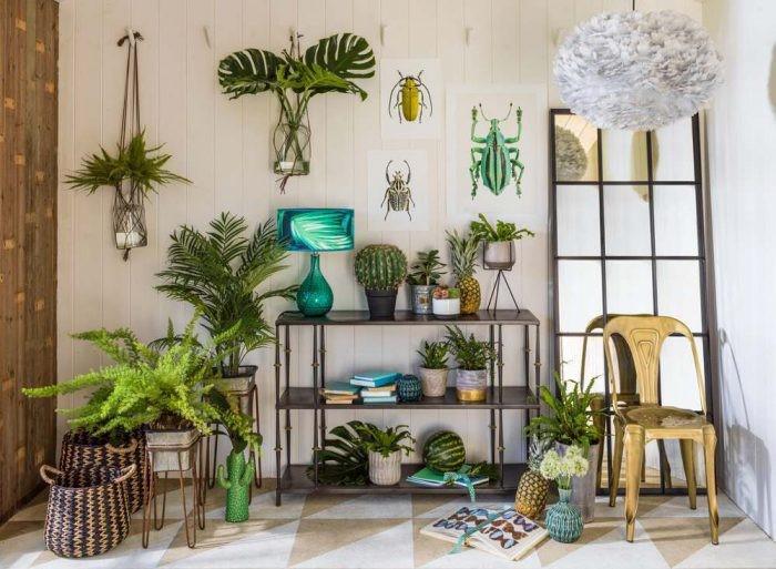 مزایای گیاهان مناسب آپارتمان در دکوراسیون داخلی منازل- گلفروشی آنلاین VIP Shop