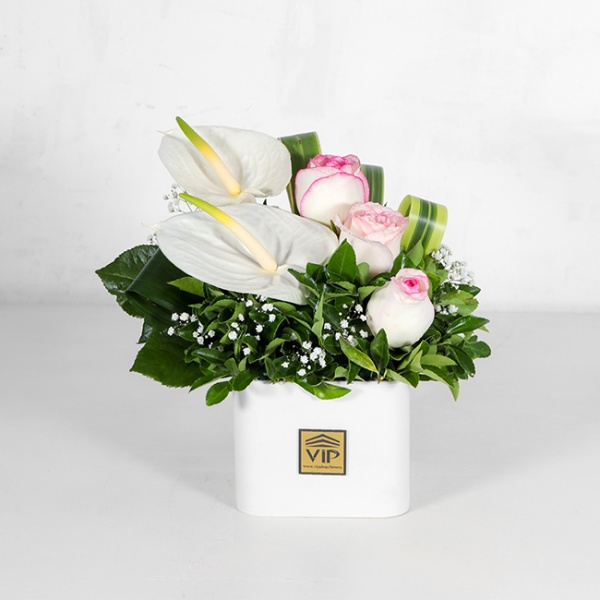 باکس گل سفید رز آنتوریوم