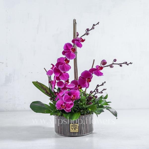 باکس گل شیشهای ارکیده- گلفروشی آنلاین VIP Shop