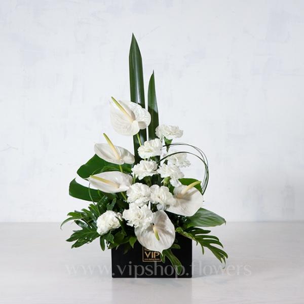 جعبه گل ترحیم آنتوریوم و میخک درشت - گلفروشی آنلاین VIP Shop