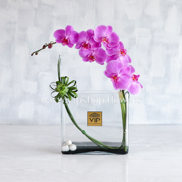 باکس گل شیشه ای لاکچری