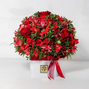 جعبه گل رز آلسترومریا قرمز - گلفروشی آنلاین VIP Shop