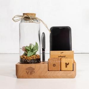 گیاه تراریوم شماره 11- گلفروشی آنلاین VIP Shop